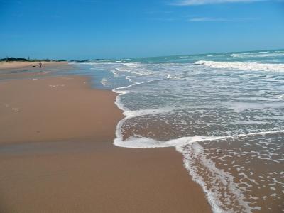 The Best Atlantic Coast